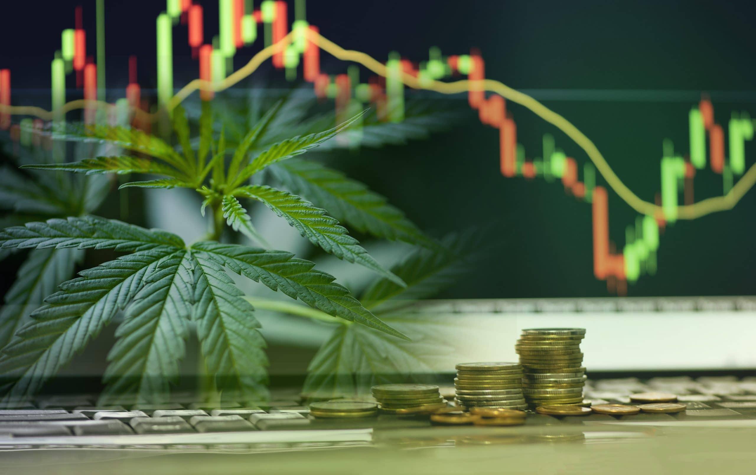 cannabis_banking_stock